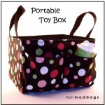 A Car Organizer For The Toys & More