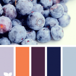 BlueberryBright