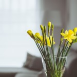 10 Ways to Maintain That New Home Smell